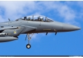 PETLAS: OFFERS F-16 MILITARY AIRCRAFT TIRES